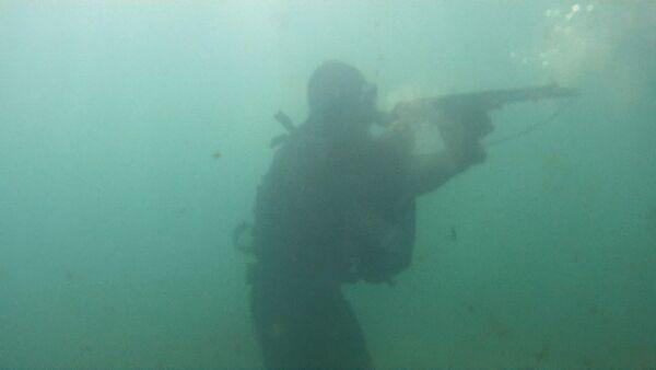 Боевые пловцы ЧФ стреляли под водой по диверсантам на учениях в Севастополе - Sputnik Абхазия
