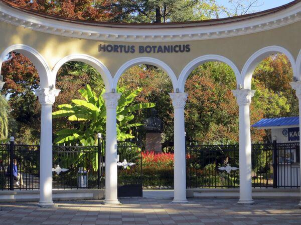 Сухумский Ботанический сад - Sputnik Абхазия
