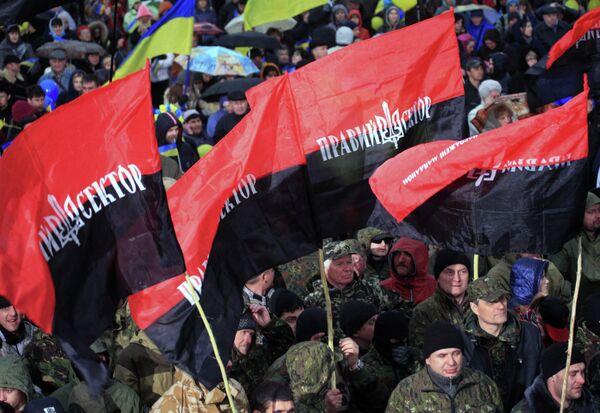 Митинг За единую Украину в Днепропетровске. Архиовное фото. - Sputnik Абхазия