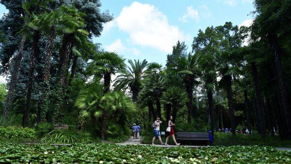 Ботанический сад. - Sputnik Абхазия