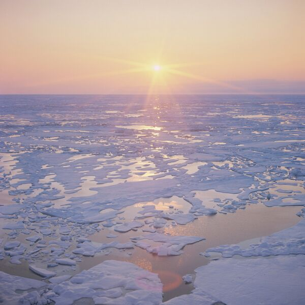 Лето в Арктике - Sputnik Абхазия
