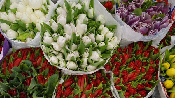 Продажа цветов в преддверии праздника 8 марта - Sputnik Абхазия