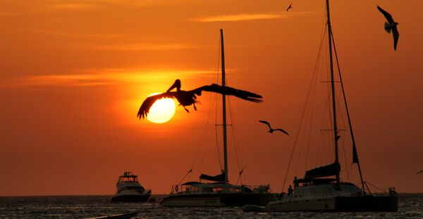 Пляж, на одном из островов архипелага Лос-Рокес в Венесуэле. Архивное фото. - Sputnik Абхазия