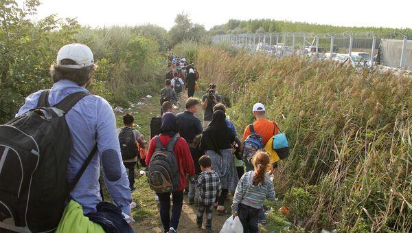 Ситуация на венгерско-сербской границе - Sputnik Абхазия
