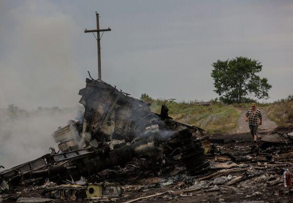 Крушение малайзийского Boeing на Украине - Sputnik Абхазия