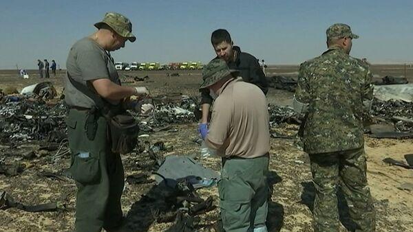 Спутник_Сотрудники МЧС РФ собирали материалы для следствия на месте крушения A321 - Sputnik Абхазия