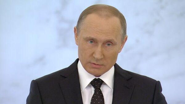 Мы не будем бряцать оружием – Путин о реакции РФ на сбитый Турцией Су-24 - Sputnik Абхазия