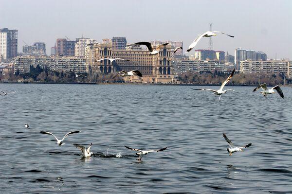 Вид на город Баку со стороны Каспийского моря. - Sputnik Абхазия