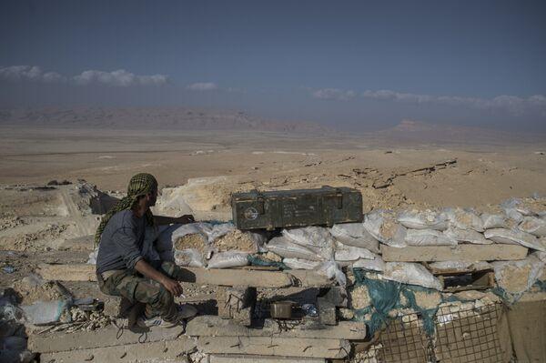 Передовые позиции бойцов сирийской армии в окрестностях Пальмиры - Sputnik Абхазия
