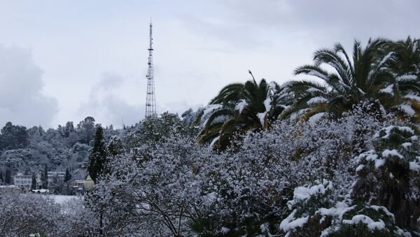 Снег в Сухуме - Sputnik Абхазия