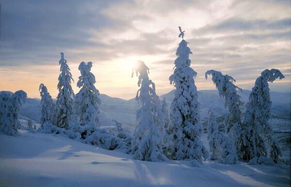 Зимний пейзаж. Архивное фото - Sputnik Абхазия