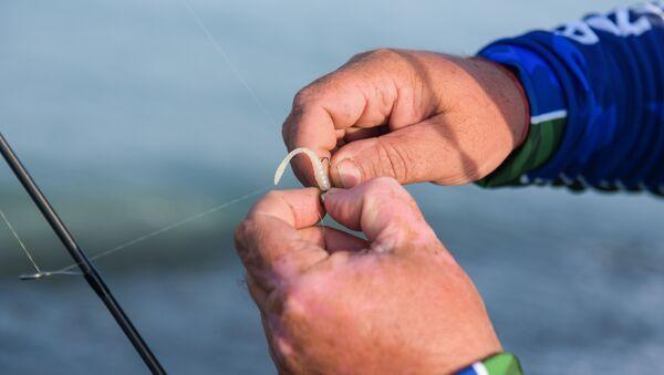 Спортивная рыбалка в селе Адзюбжа - Sputnik Аҧсны