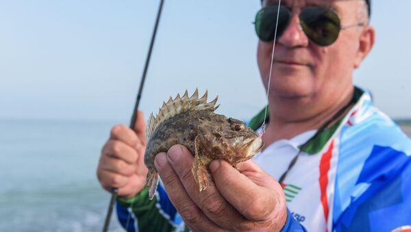 Спортивная рыбалка в селе Адзюбжа - Sputnik Абхазия
