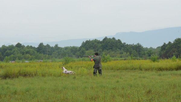 Охотники Абхазии показали своих легавых собак на поле - Sputnik Абхазия