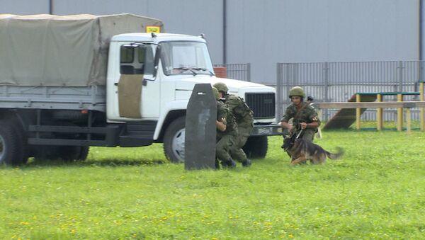 Гонки на БТР и дрессировка овчарок: будни бойцов Росгвардии на базе в Балашихе - Sputnik Абхазия