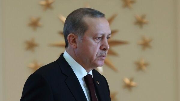 Президент Турции Реджеп Эрдоган - Sputnik Абхазия