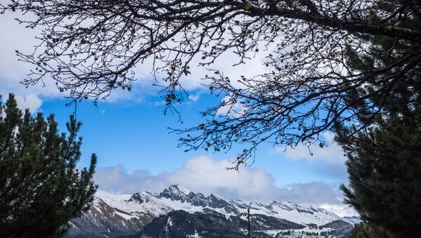 Горы в Швейцарии - Sputnik Абхазия