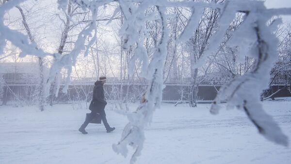 Аномальные морозы в Москве - Sputnik Абхазия
