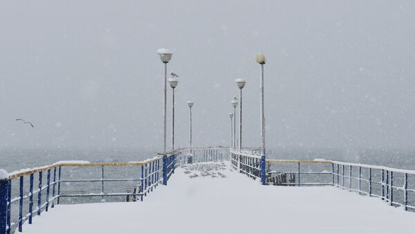 Снегопад в Абхазии - Sputnik Аҧсны