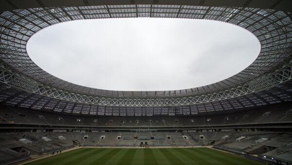 Мэр Москвы С. Собянин ознакомился с ходом строительства стадиона Лужники - Sputnik Абхазия