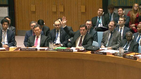 Россия в СБ ООН заблокировала проект резолюции по Сирии - Sputnik Абхазия