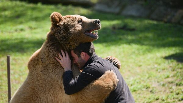 Медверь Балу в семье Ченгелия - Sputnik Абхазия