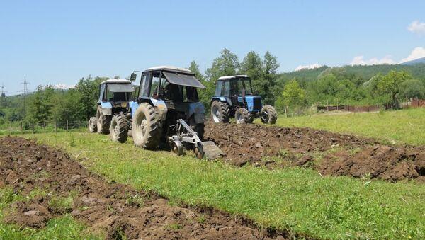 Министерство сельского хозяйства Абхазии продолжает весенне-полевые работы в районах республики. - Sputnik Абхазия