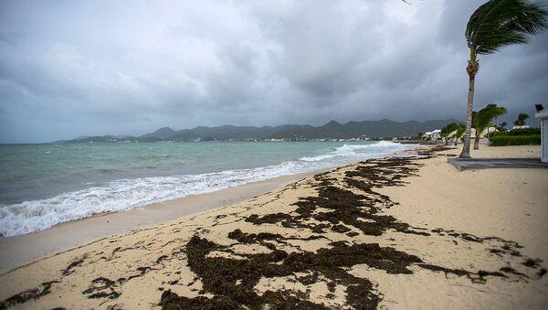 Ураган Ирма надвигается на пляж на острове Сен-Мартен в Карибском море. 5 сентября 2017 - Sputnik Аҧсны
