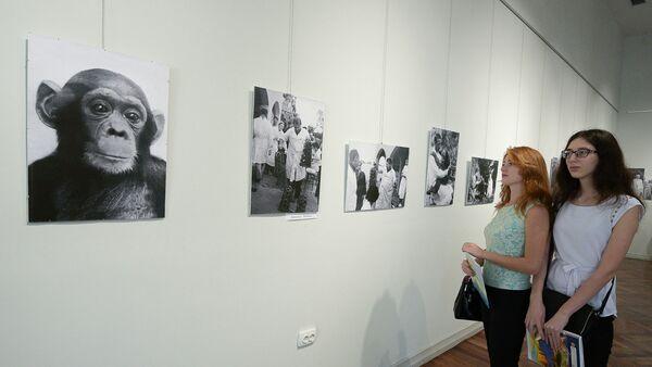 Фотовыставка в честь 90-тия НИИЭПиТ в центральным выставочном зале - Sputnik Абхазия