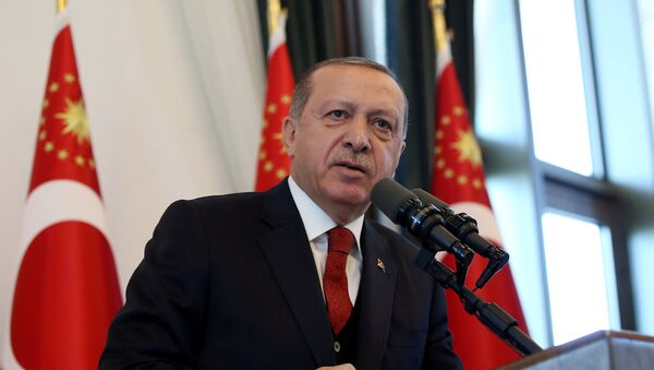 Президент Турции Тайип Эрдоган, фото из архива - Sputnik Абхазия