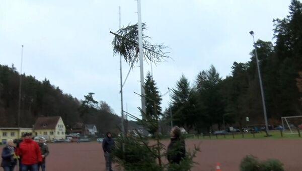 Чемпионат по метанию елок прошел в немецком Вайдентале - Sputnik Абхазия