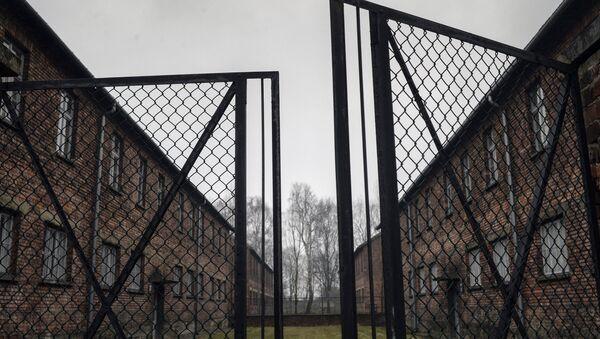 RT Освенцим ахақәиҭтәра иазку афильм ҿыц ӡырнагеит - Sputnik Аҧсны