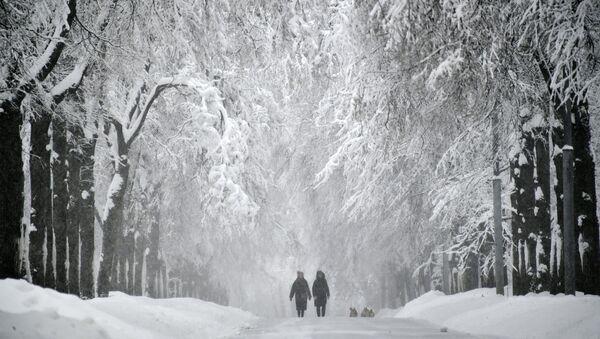Заснеженная аллея на Воробьевых горах во время снегопада - Sputnik Аҧсны