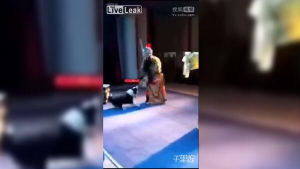 В Китае собака вцепилась в актера во время спектакля - Sputnik Абхазия