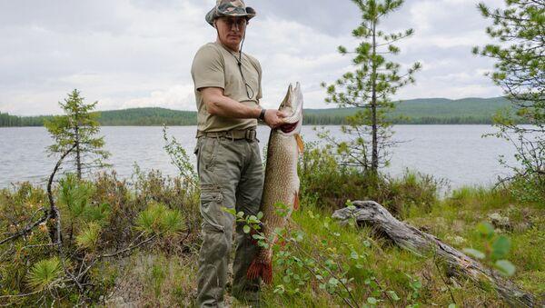 Президент России Владимир Путин во время рыбалки, архивное фото - Sputnik Абхазия
