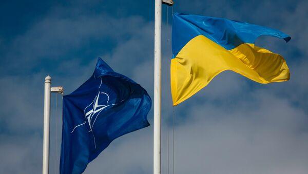 Флаг Украины и НАТО - Sputnik Абхазия