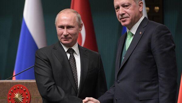 Рабочий визит президента РФ В. Путина в Турцию - Sputnik Абхазия
