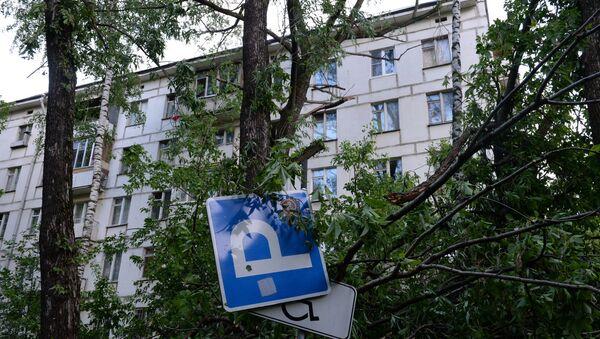 Последствия урагана в Москве. Архивное фото - Sputnik Аҧсны