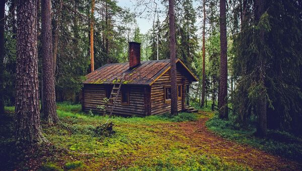 Домик в лесу в Финляндии - Sputnik Абхазия