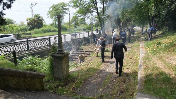 Уборка на высшем уровне: как прошел День чистоты в Абхазии - Sputnik Абхазия