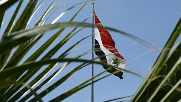 Флаг САР на улице Дамаска - Sputnik Абхазия