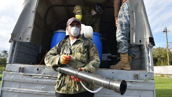 Борьба с мраморным клопом - Sputnik Абхазия