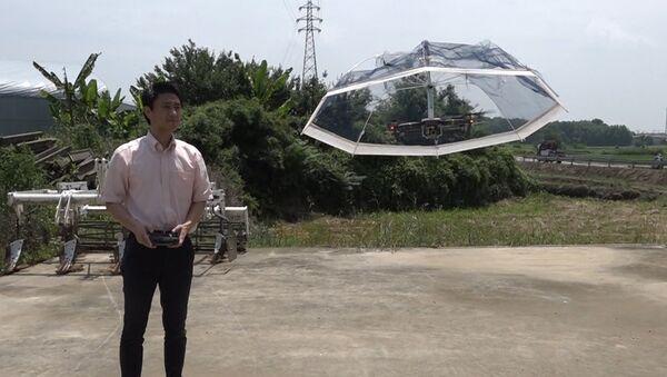 Зонтик-дрон - Sputnik Абхазия