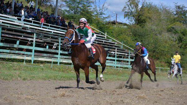 Конноспортивные соревнования в селе Мыку - Sputnik Абхазия