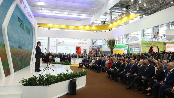 Премьер-министр РФ Д. Медведев на открытии 20-й агропромышленной выставки «Золотая осень» - Sputnik Аҧсны