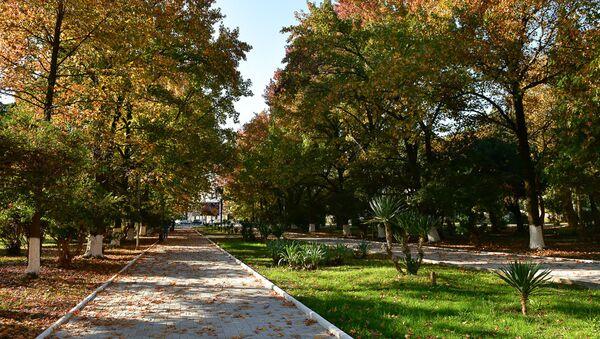 Осень в парке Свободы - Sputnik Абхазия