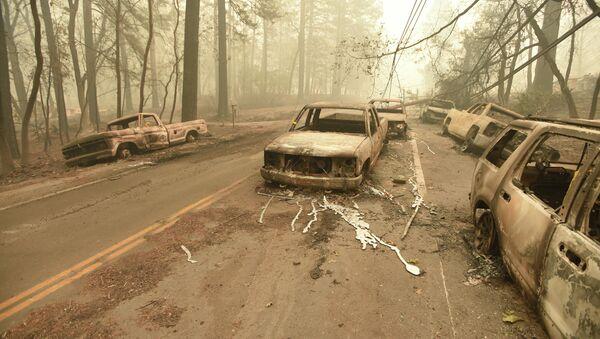 Последствия пожара в Калифорнии - Sputnik Аҧсны