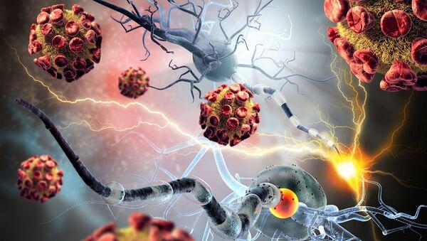 Раковые и нервные клетки - Sputnik Абхазия