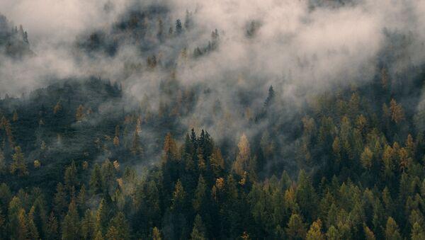 Осенние горы  - Sputnik Абхазия