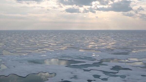 Льды Антарктиды стремительно тают - Sputnik Абхазия